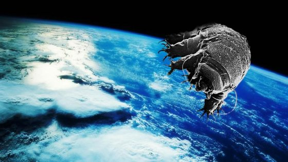 tardigrades_in_space